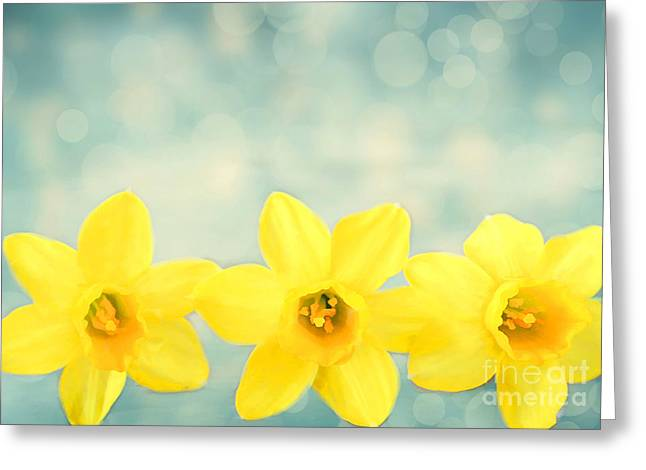 Spring Yellow Greeting Card by Darren Fisher