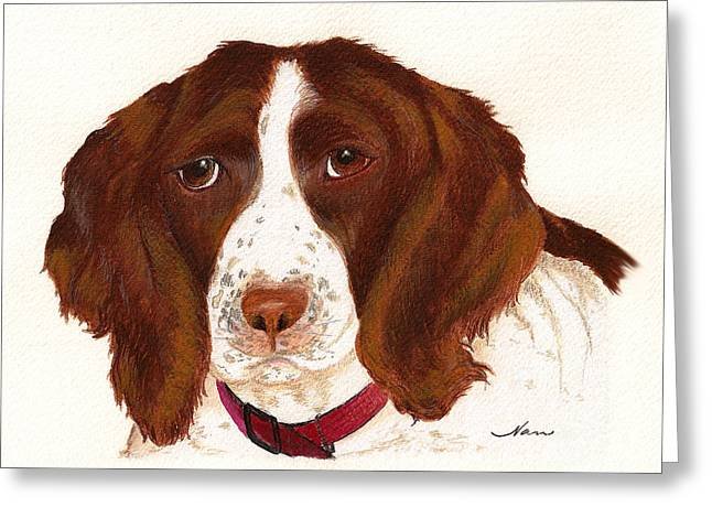 Greeting Card featuring the painting Springer Spaniel  by Nan Wright