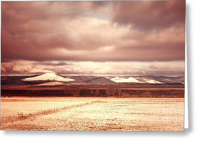 Springerville Arizona View Greeting Card by Donna Greene