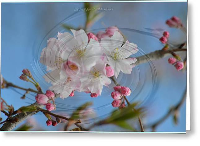 Springing Blossoms Greeting Card by Sonali Gangane