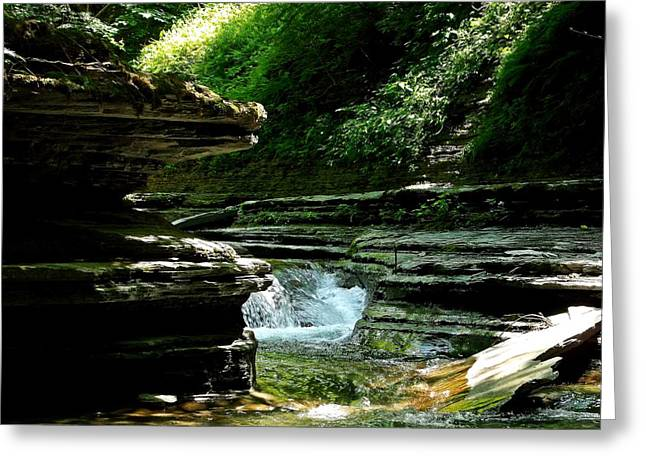 Greeting Card featuring the photograph Springs Of Living Water by Christian Mattison