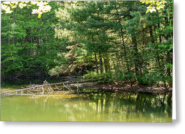 Springtime At Crystal Lake Greeting Card by John Carroll