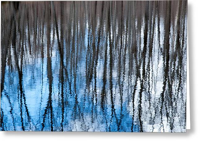 Springtime Beaver Pond Reflections 1 In Gatineau Park Quebec. Greeting Card by Rob Huntley