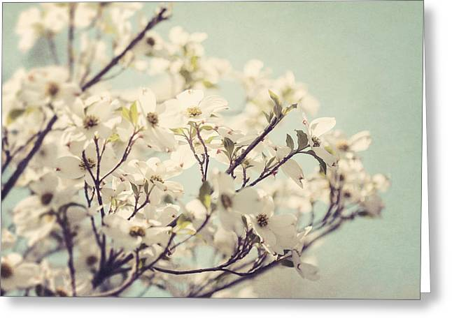 Springtime Dogwood Greeting Card by Lisa Russo