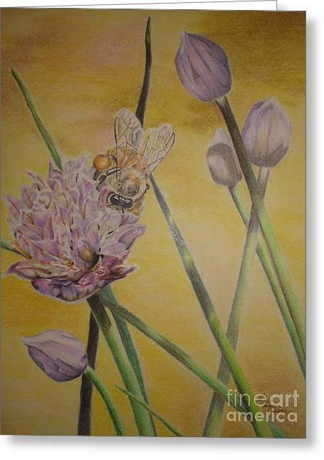 Springtime Glow Greeting Card by Laurianna Taylor