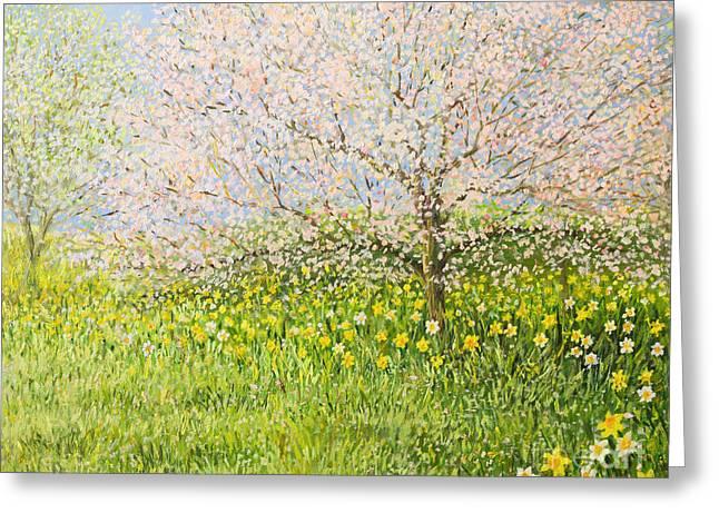 Springtime Impression Greeting Card by Kiril Stanchev