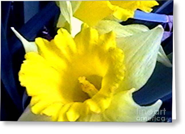 Springtime In Arkansas Greeting Card