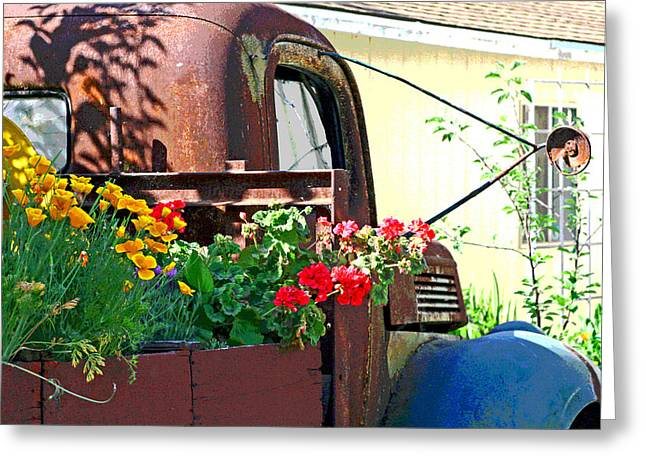 Springtime In Clarksburg Greeting Card by Joseph Coulombe