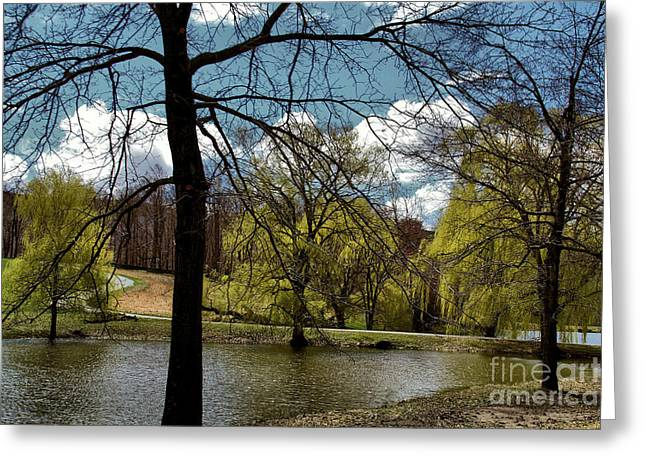 Springtime In The Country Greeting Card by Gemblue Photography