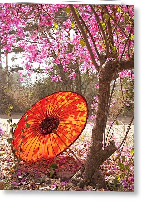 Springtime Umbrella Greeting Card