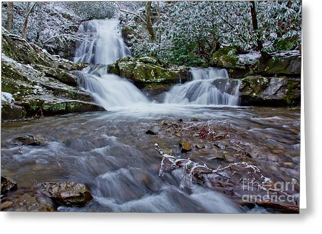 Spruce Flats Falls II Greeting Card by Douglas Stucky