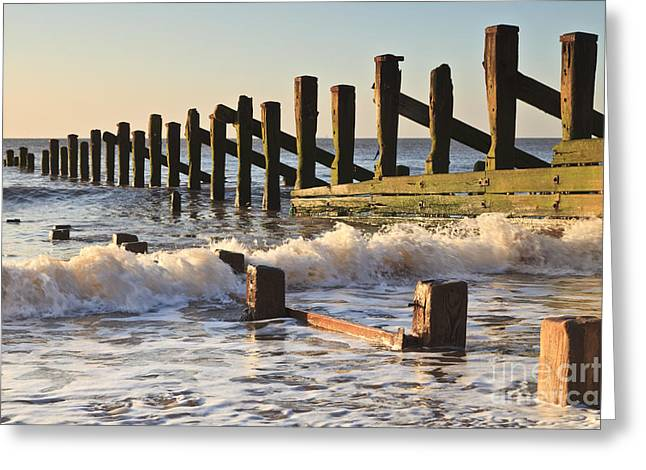 Spurn Point Sea Defence Posts Greeting Card by Colin and Linda McKie