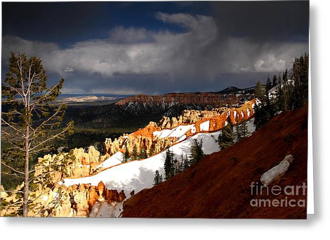 Squall Over The South Rim Greeting Card by Butch Lombardi
