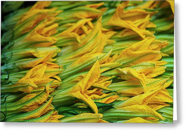 Squash Leaves Are A Treat In Springtime Greeting Card by Brian Guzzetti