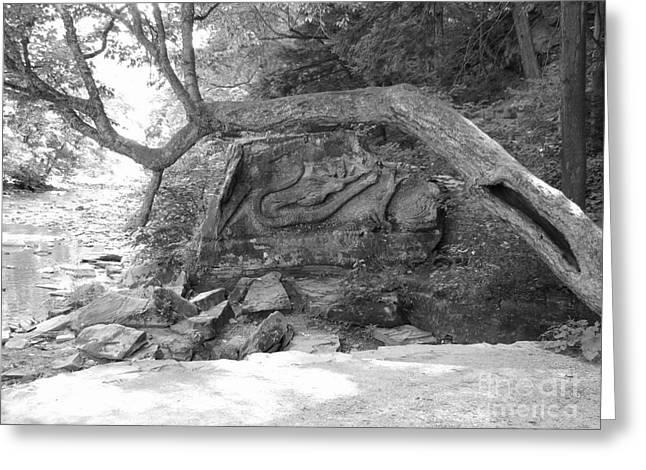 Squaw Rock  Greeting Card by Michael Krek