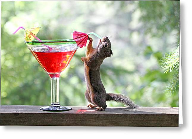 Squirrel At Cocktail Hour Greeting Card