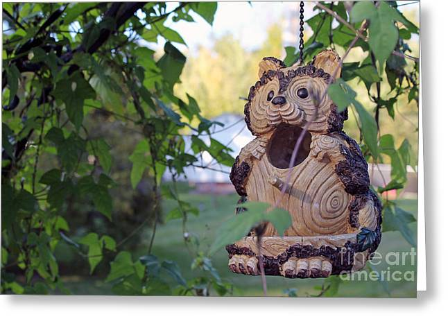 Squirrel Bird Feeder Greeting Card
