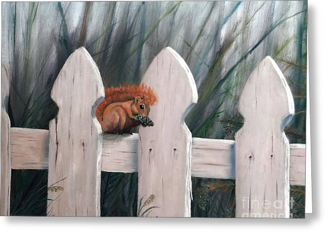 Squirrel Dining On Pine Greeting Card by Stephen Schaps