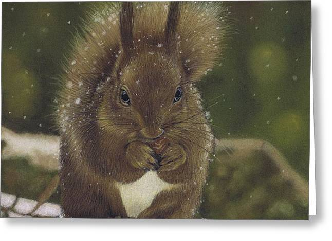 Squirrel Nutkin Greeting Card
