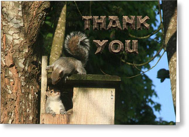 Squirrel Talk   And A Reminder To Utter The Words Thank You. Greeting Card