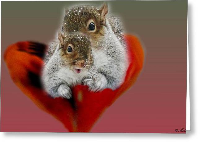 Squirrels Valentine Greeting Card