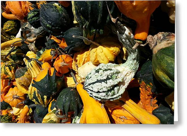 Greeting Card featuring the photograph Squish Squash by Caryl J Bohn