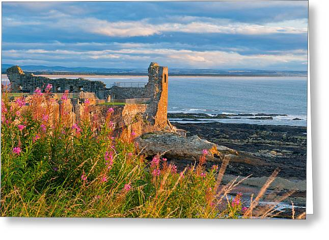 St Andrews Castle Greeting Card by David Ross