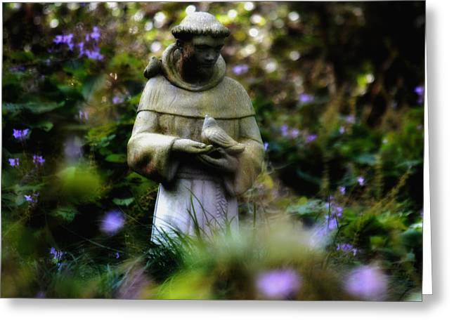 St. Francis Of Assisi Greeting Card by Tara Miller