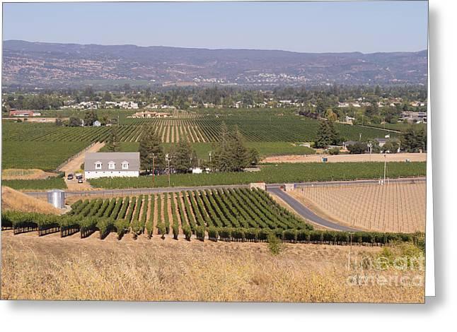 St Helena Vineyards Napa California Dsc1739 Greeting Card