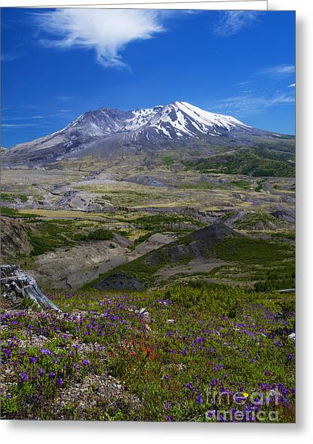 St. Helens Crater Greeting Card by Mike Dawson