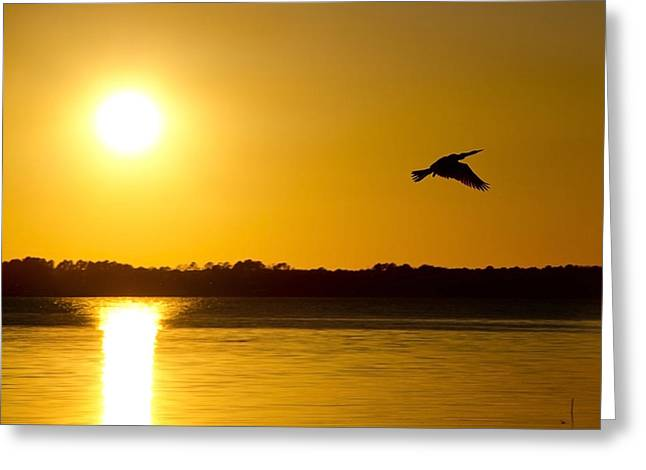St. Johns Sunset Greeting Card