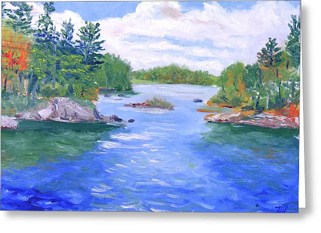 St Lawrence River-view From Waterson State Park Greeting Card by Robert P Hedden