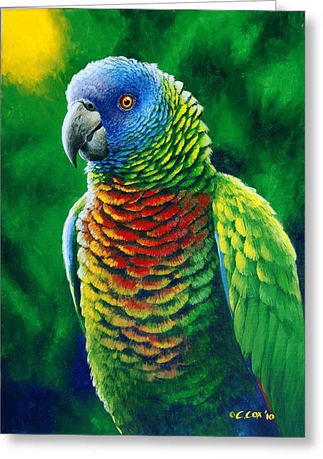 St. Lucia Parrot - Fine Colours Greeting Card by Christopher Cox