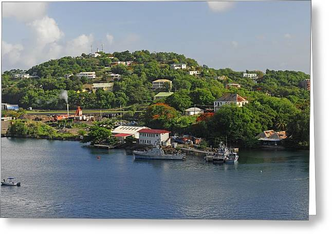 St Lucia Greeting Card by Willie Harper