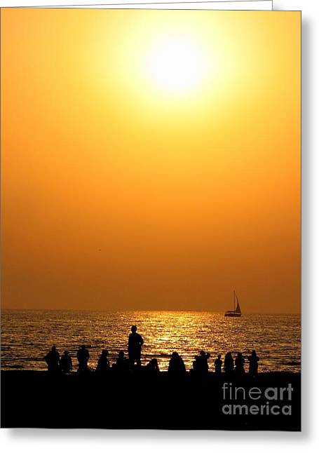 St. Petersburg Sunset Greeting Card by Peggy Hughes