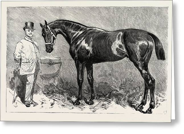St. Simon, Winner Of The Goodwood Cup Greeting Card