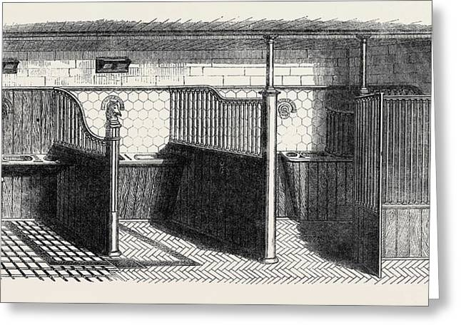 Stable Fittings, Open Stall With Patent Sliding Barrier Greeting Card