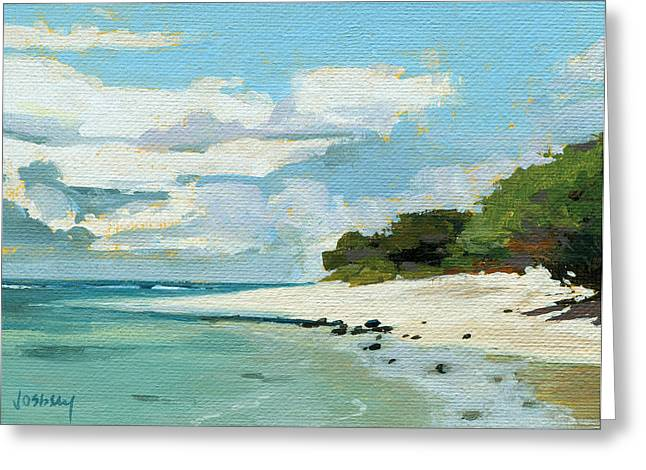 Stable Road Beach Maui Greeting Card by Stacy Vosberg