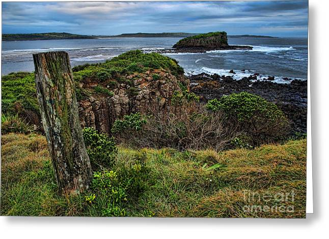 Greeting Card featuring the photograph Stack Island by Trena Mara