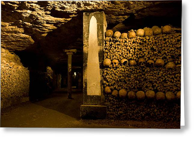 Stacked Bones In Catacombs, Paris Greeting Card by Panoramic Images