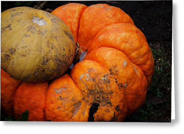 Stacked Pumpkins Greeting Card