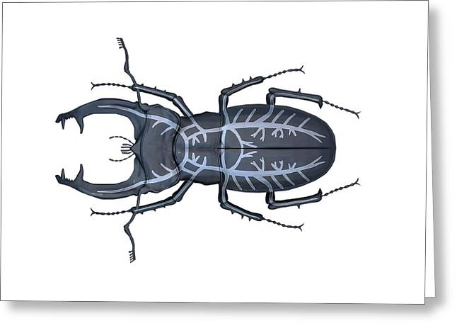 Stag Beetle Respiratory System Greeting Card by Mikkel Juul Jensen