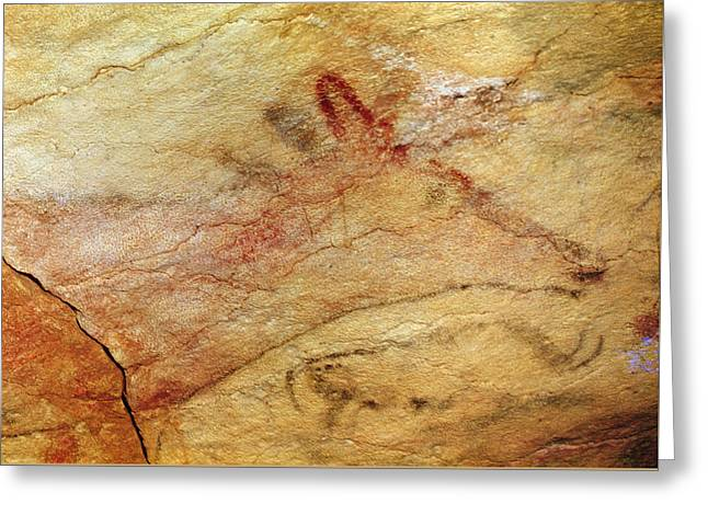 Stag From The Caves Of Altamira  Cave Painting  Greeting Card