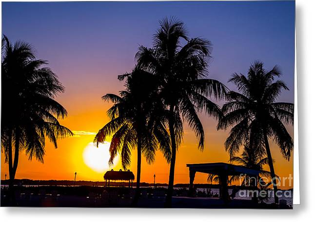 Staging Sunset Greeting Card by Rene Triay Photography