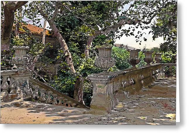 Stairs In Summer Shade Greeting Card