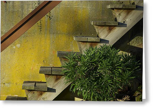 Stairs Greeting Card by Michele Wright