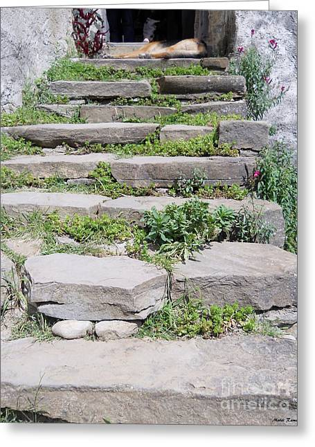 Greeting Card featuring the photograph Stairs by Ramona Matei