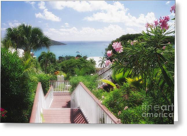 Stairs To Paradise Greeting Card by George Oze
