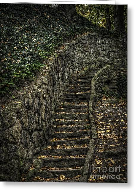 Stairway In The Park Greeting Card