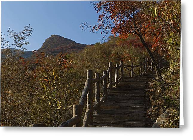 Stairway To The Top Greeting Card by Qing